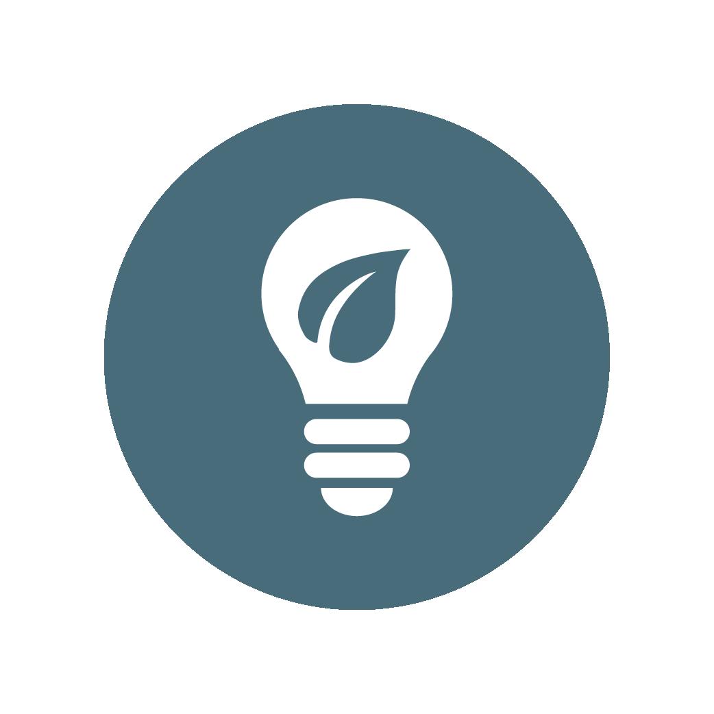 100% LED Lightbulbs